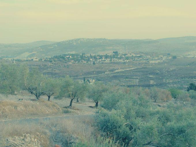 settlement_polaroid
